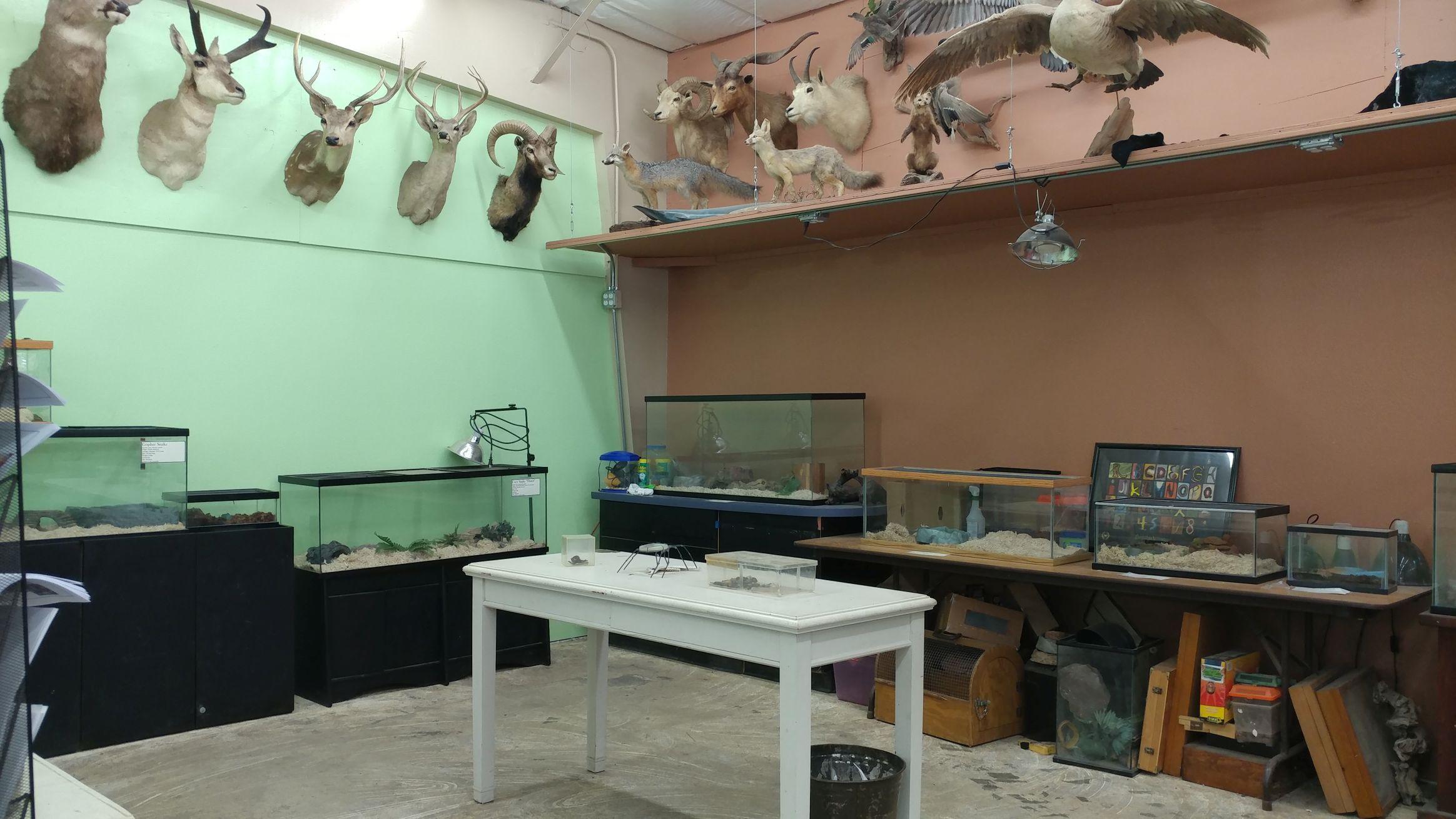 jmdc gift shop and critter corner